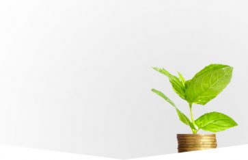 Ontvang tot 2,32% belastingvoordeel met een belegging in groenfonds Regionaal Duurzaam 1